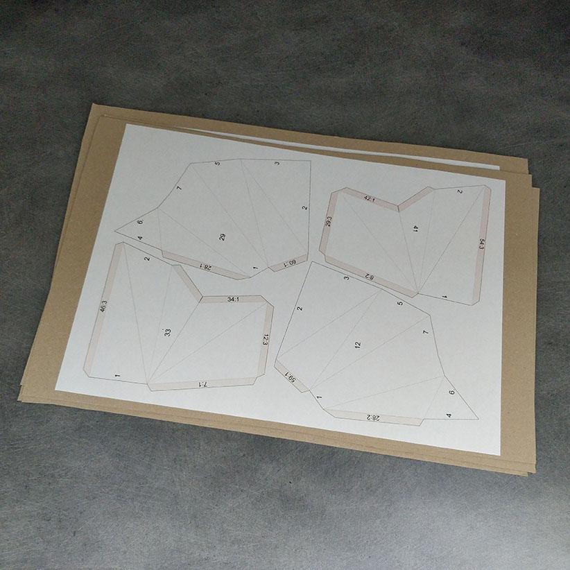 Raton laveur : Collage du plan sur du carton