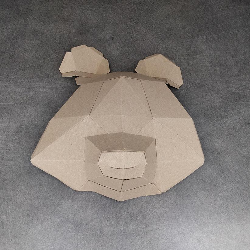 Face du raton Laveur